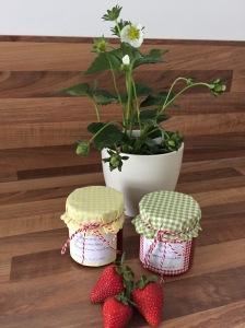 Erdbeer-Marmeladen-Duett