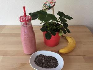 Easy Frühlings-Frühstücks-Smoothie
