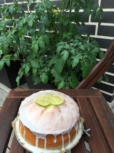 Limetten-Kokos-Kuchen