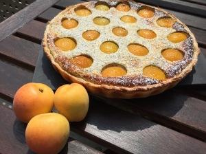 Aprikosen-Quark-Tarte mit Mohn